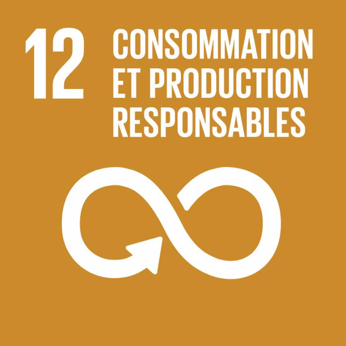 12. Consommation et production responsables