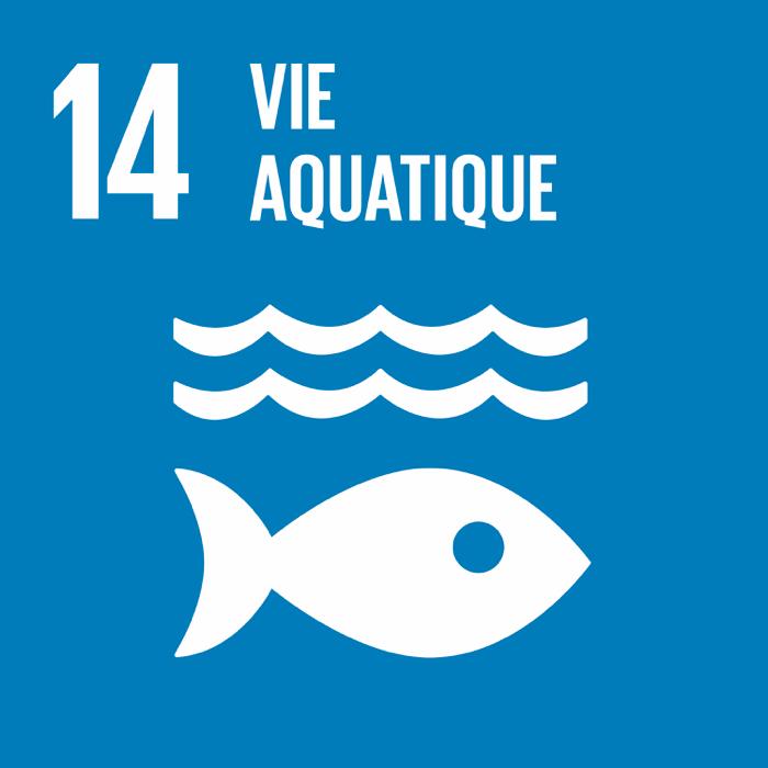 14. Vie aquatique
