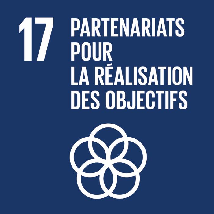 17. Partenariats pour la réalisation des objectifs
