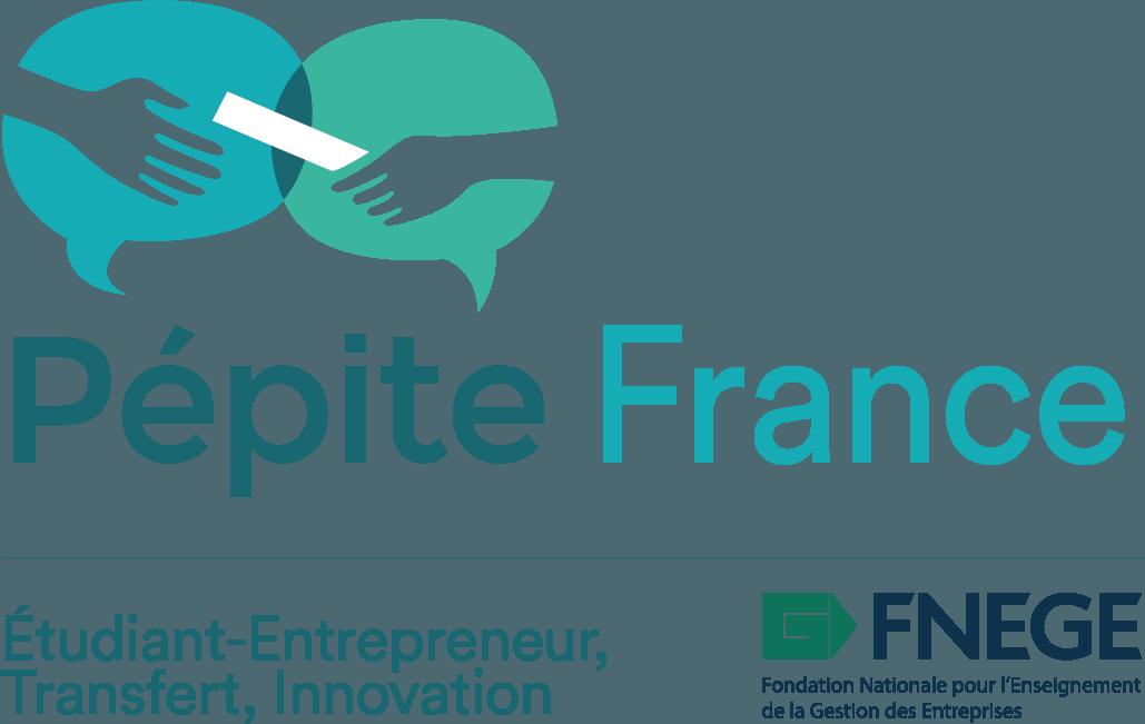 FNEGE – Pépite France